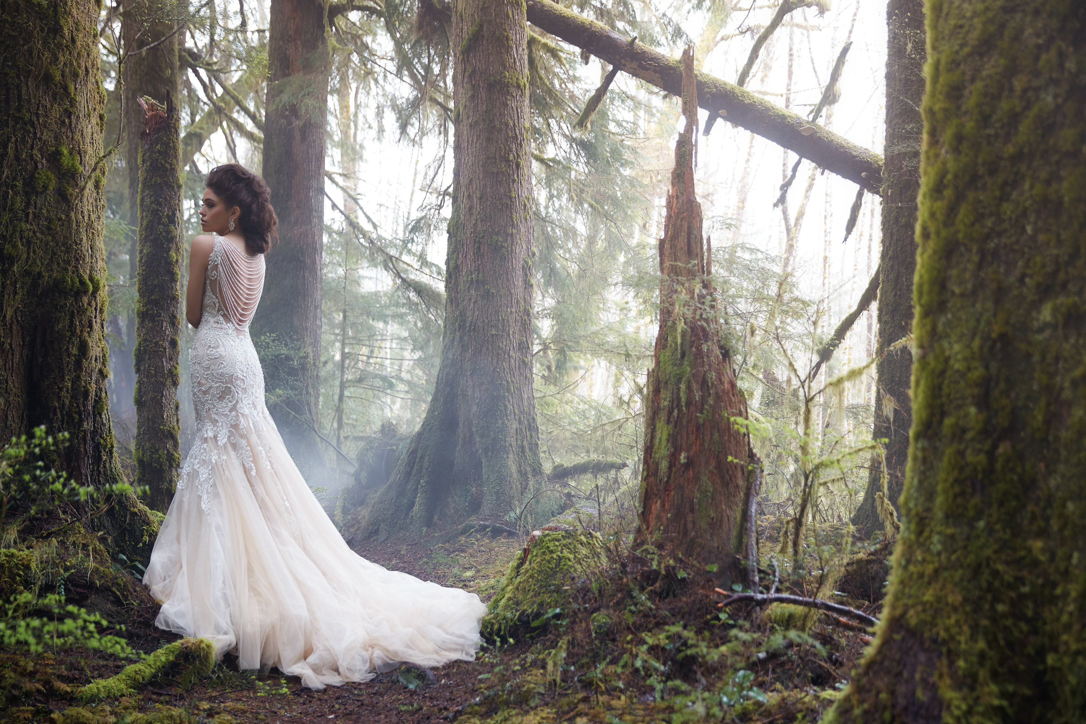 The Wedding Gown Tampa Search Begins And Ends At Nikkis With Best Selection Most Professional Friendly Stylists